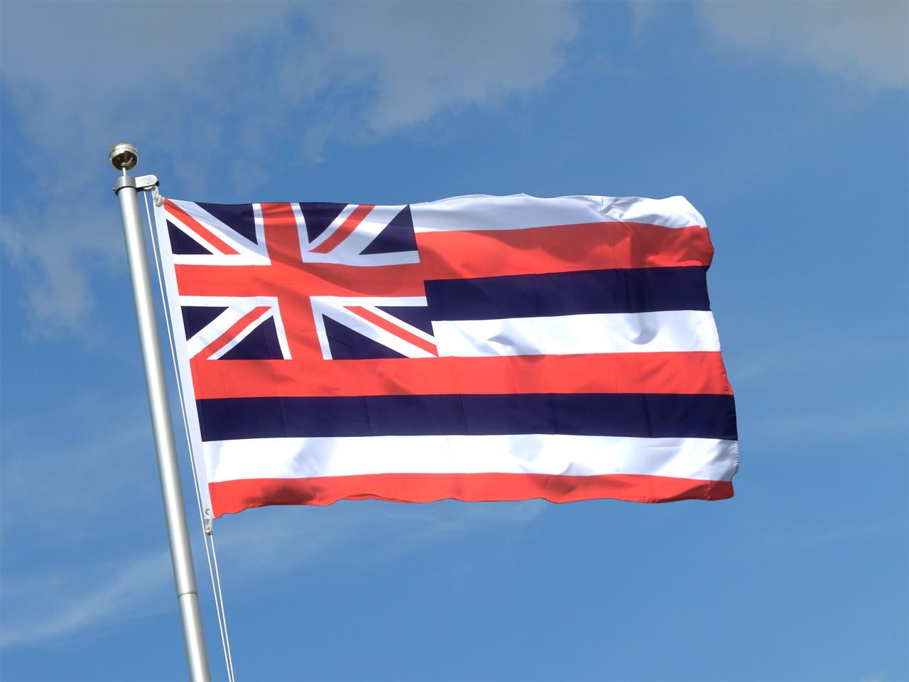 hawaii flagge 90 x 150 cm kaufen. Black Bedroom Furniture Sets. Home Design Ideas