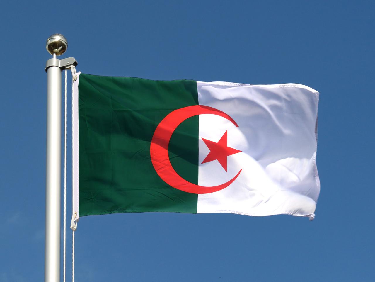 Algerie Drapeau drapeau algerien pas cher - 60 x 90 cm - m. des drapeaux