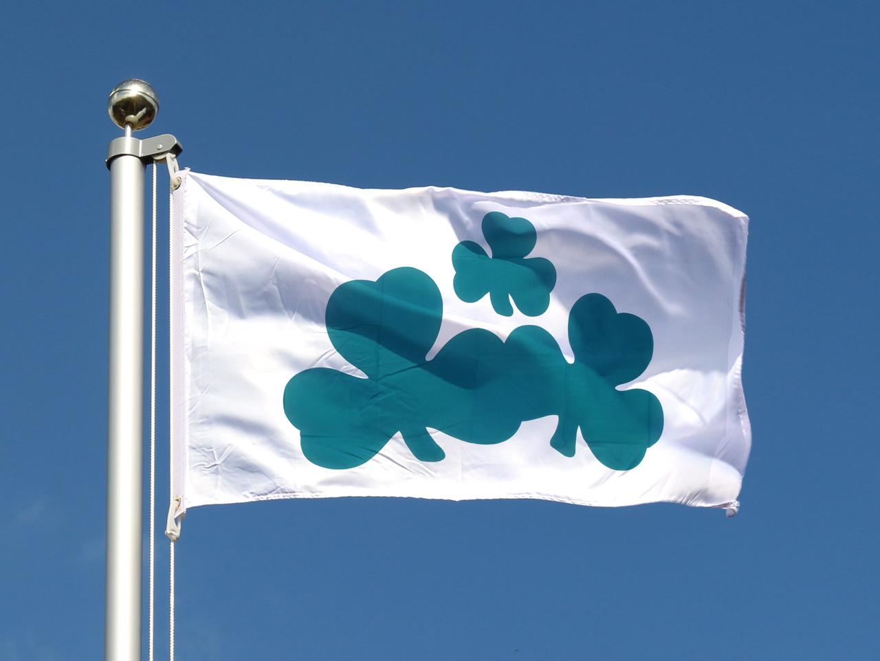 Alaska Hissflagge 90 x 150 cm Fahne USA Flagge
