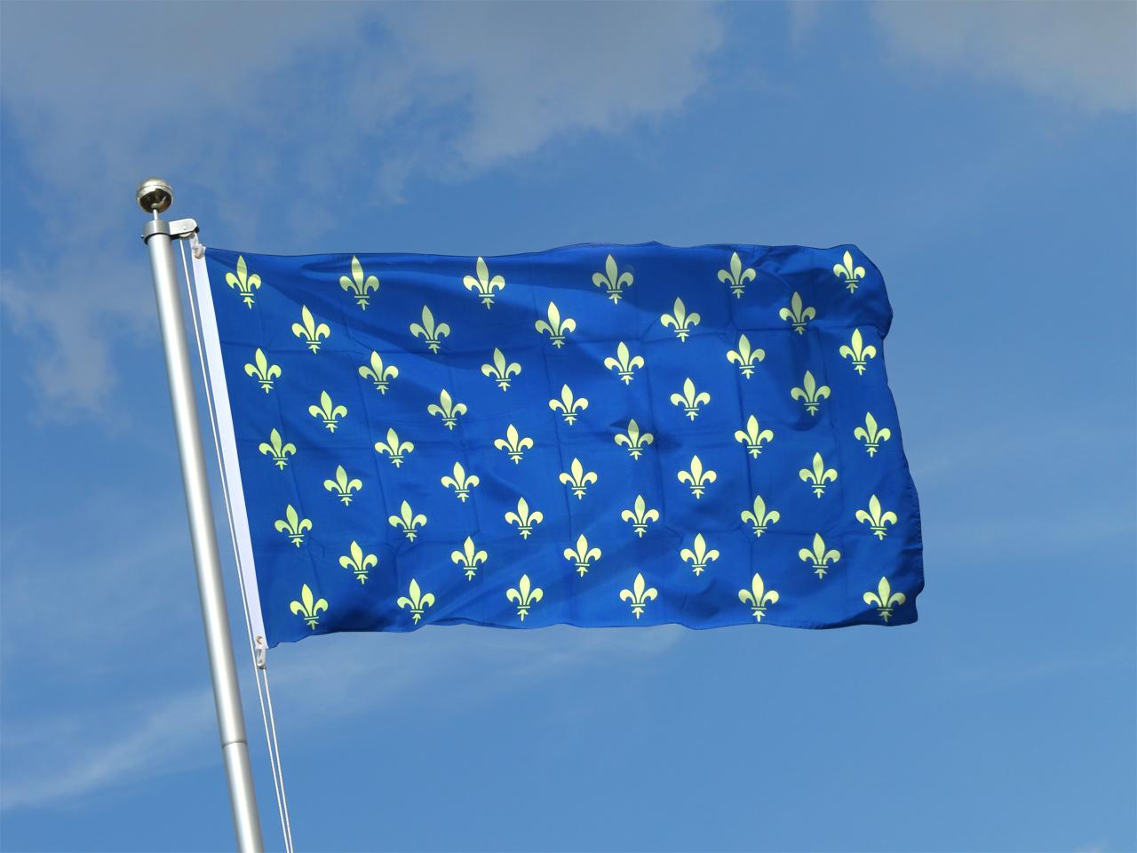 Drapeau Fleur-de-Lys, bleu à acheter - 90 x 150 cm