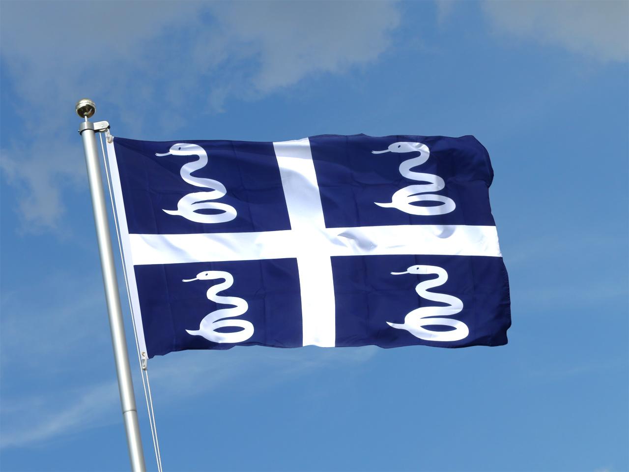 Buy Martinique Flag - 3x5 ft (90x150 cm)