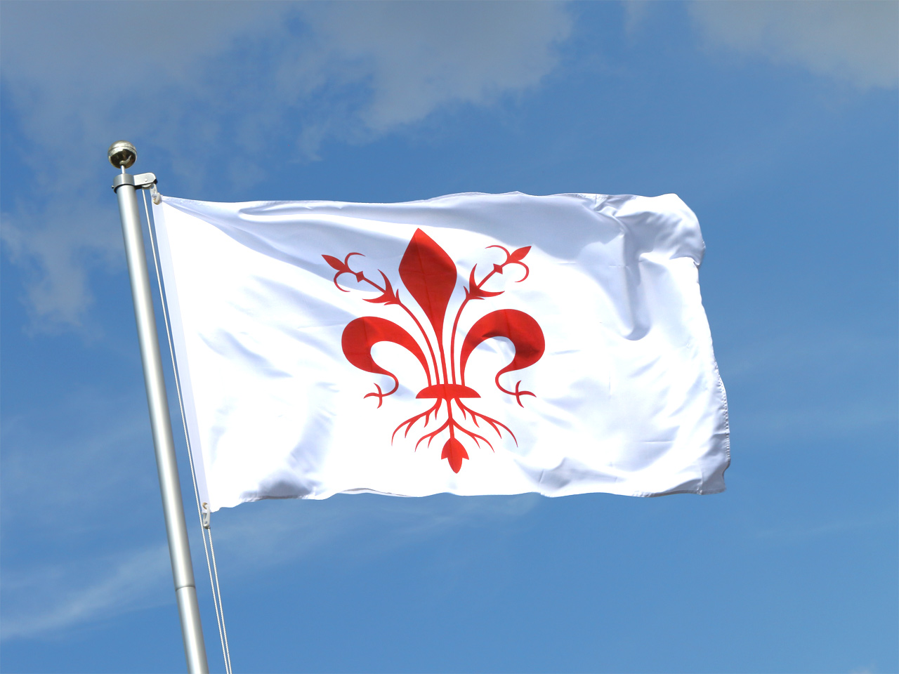 Buy florence flag 3x5 ft 90x150 cm royal flags for The flag is