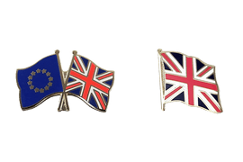 Flag Lapel Pins and Crossed Flag Pins
